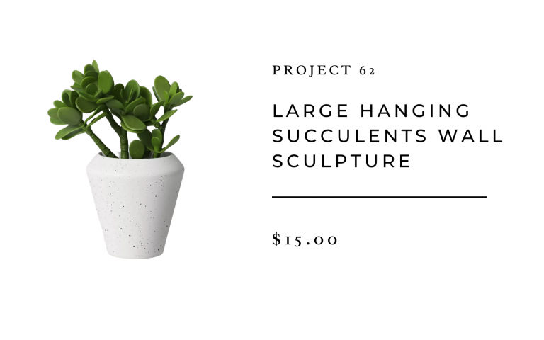 large hanging succulents wall sculpture from target